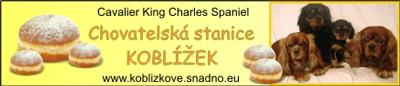 koblizek_banner01